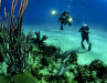 Fabien Cousteau's $135mCaribbean Deep-Sea Dream